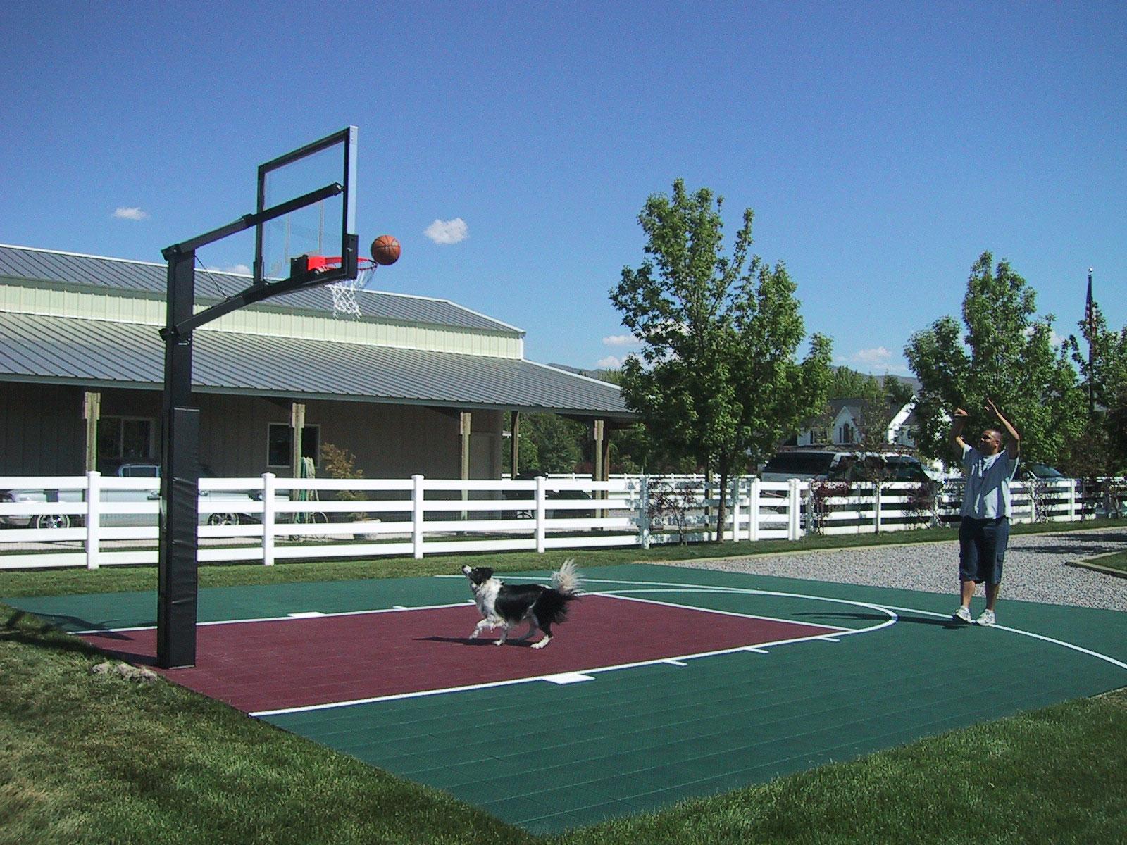 Man and dog playing basketball on their backyard court
